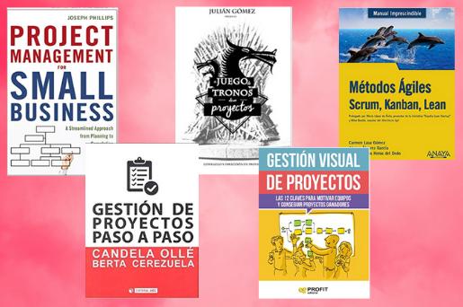 libros gestion proyectos