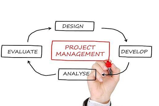 gerencia proyectos que es