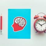 Ritmos Circadianos: ¿Cuál es la mejor hora para estudiar?